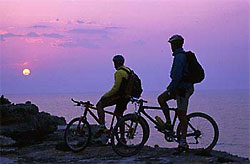 Sport on the island of Elba: mountain bike
